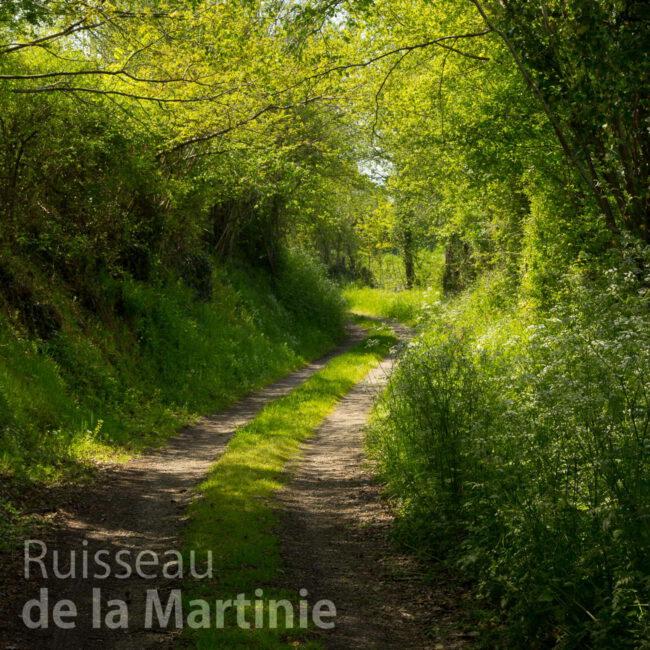 Cover Ruisseau de la Martinie