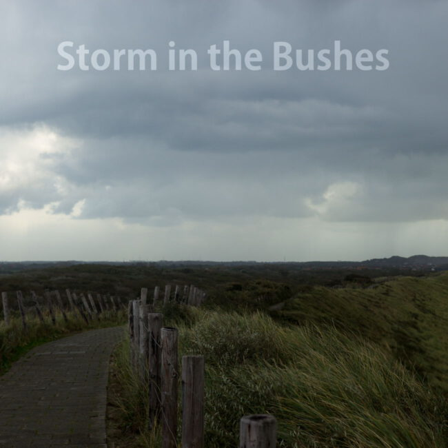 Storm in the Bushes Cover
