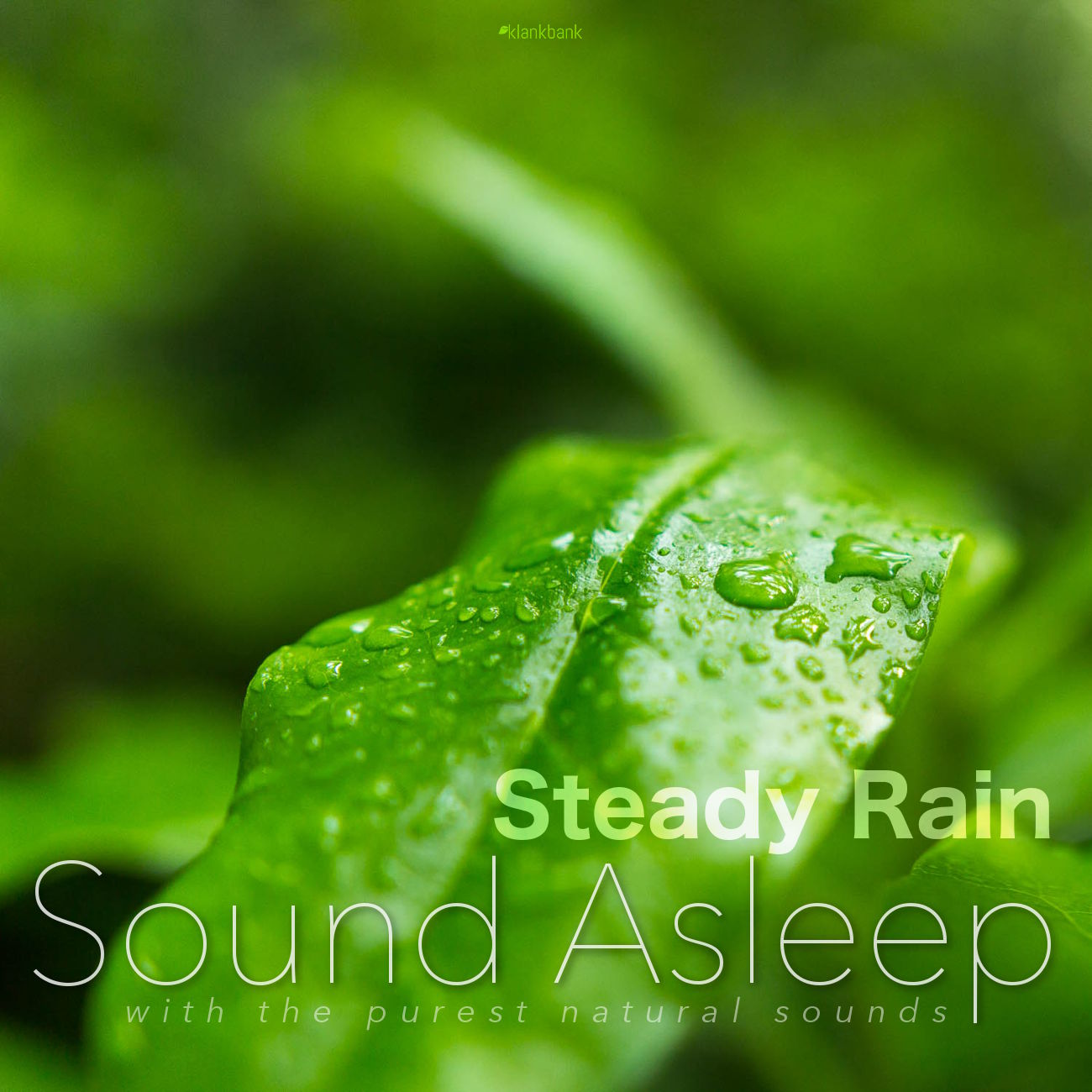 Steady Rain Cover