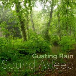 Gusting Rain Cover
