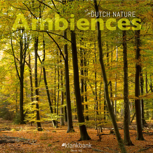 Dutch Nature Ambiences Cover