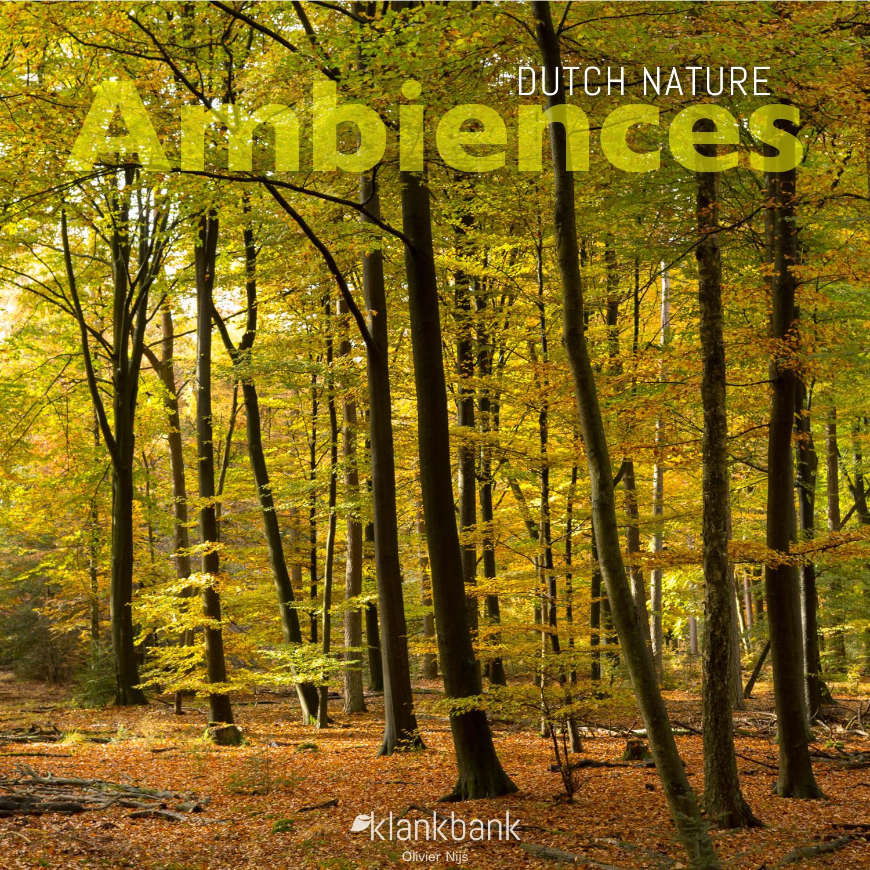 Dutch Nature Ambiences Cover
